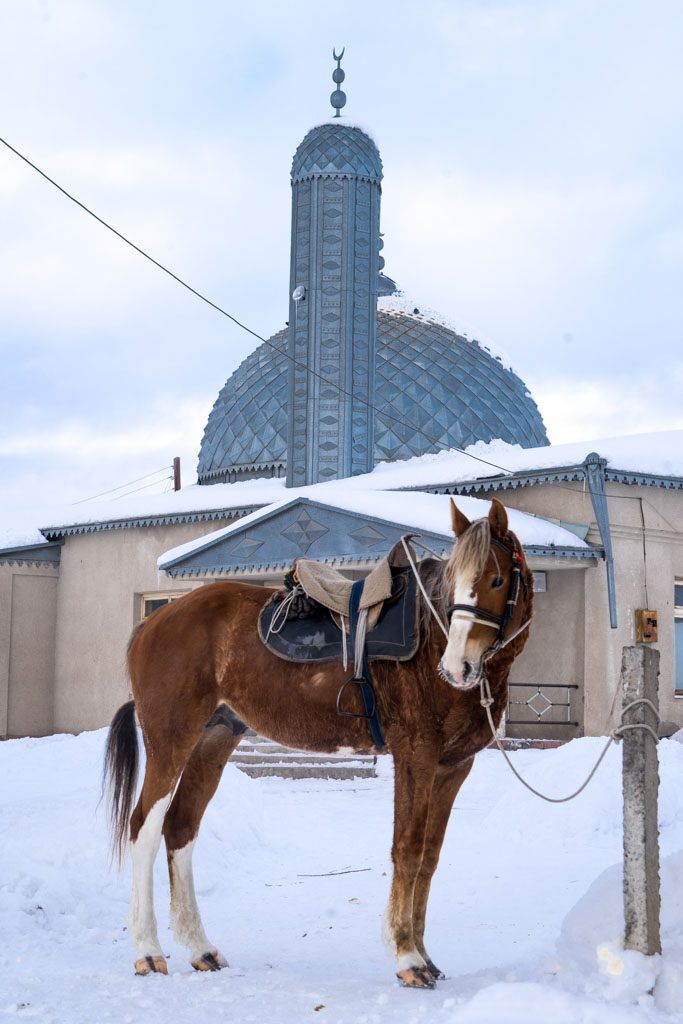 Horse of Suusamyr village in front of the mosque